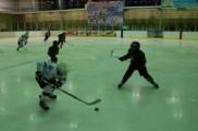 В школе олимпийского резерва по хокею с шайбой выявлены крупные хищения