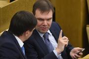 Депутат Левин возглавил организацию по защите интернет-пользователей