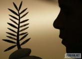 Национальный павильон Беларуси впервые будет представлен на Каннском кинофестивале