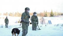 В Беларуси началась внезапная проверка боеготовности