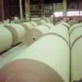 Новый химический комбинат по глубокой переработке хлорсодержащего сырья появится в Солигорске
