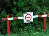 Из-за жары закрывают вход в леса