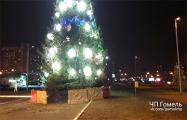 В Гомеле из-за Деда Мороза едва не сгорела городская елка