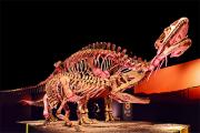 Окаменелости урины рассказали о мочеиспускании динозавров