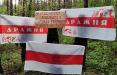 Партизаны свободной Дражни и Шариков вышли на акции протеста