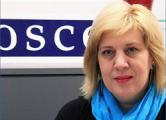 ОБСЕ: Дела Pussy Riot и «плюшевого десанта» - опасный тренд