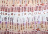 Генпрокуратура предлагает ввести дополнительные денежные пособия для усыновителей
