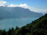 Женевское озеро загрязнили нефтью