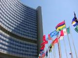 Белорусская делегация участвует в работе 51-й сессии Комитета ООН по программе и координации