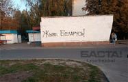 Как действуют «партизаны» в Бобруйске