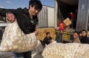 Беларусь сняла временные ограничения на ввоз украинского картофеля