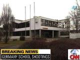 В Германии объявят оружейную амнистию
