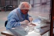 Белорусские ученые работают над трансмутацией долгоживущих радионуклидов в короткоживущие