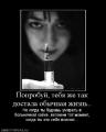 Белорусская выездная торговля «достала» жителей Петербурга