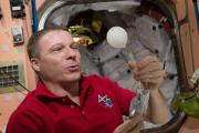 Астронавты растворили шипучую таблетку в условиях невесомости