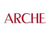 Arche подает документы на перерегистрацию