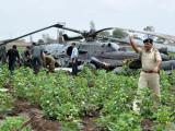 На учениях в Индии столкнулись два военных вертолета