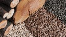 Лукашенко предложил перейти на дрова в отоплении