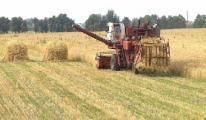 Господдержка сельского хозяйства в Беларуси должна сохраниться - Мясникович
