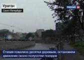 Электроснабжение восстановлено в пострадавших от сильного ветра населенных пунктах Беларуси