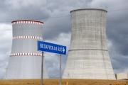 Литва в Женеве осудила строительство БелАЭС возле своих границ