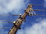 Шквалистый ветер обесточил в Белыничском районе 22 населенных пункта