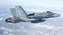 Канадские истребители приземлились на военной базе в Литве