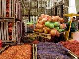 Беларусь больше других стран СНГ увеличила посевные площади под картофель и овощи