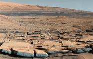 Земные микробы и грибы оказались способны выжить в условиях Марса