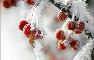 В ночь на 7 января местами ожидаются морозы до -32°С
