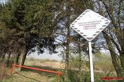 Заказник «Лебяжий» может превратиться в обычный парк в «спальнике»