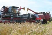 Хлеборобы Витебской области преодолели рубеж по намолоту 1 млн. т зерна нового урожая