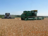 Системное повышение плодородия почв позволит Витебской области выйти на урожайность 50 ц/га