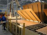 Австрийская Kronospan приступила к строительству деревоперерабатывающего производства в Сморгони