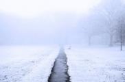 Сильный туман: оранжевый уровень опасности объявлен в Беларуси