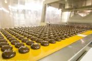 Страны Таможенного союза создали ассоциацию предприятий кондитерской отрасли