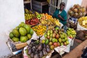 Россия ввела запрет на ввоз африканских фруктов через Беларусь