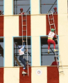 Сборная Беларуси рассчитывает на первое место на чемпионате мира по пожарно-спасательному спорту