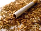 Витебская таможня пресекла незаконный вывоз сигарет на Br1 млрд.