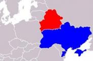 Беларусь готова сотрудничать с новой украинской властью