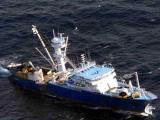 Сомалийские пираты освободили испанское судно за обещание выкупа