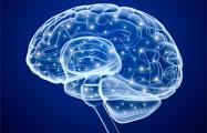 Ученые: Подключение мозга к компьютеру сделает людей телепатами