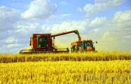 Немецкие фермеры приглашают белорусов на работу