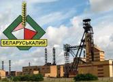 «Беларуськалий» исключен из состава концерна «Белнефтехим»
