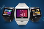 Первые наручные часы с экраном Mirasol появились на Amazon
