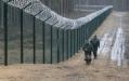 МВД Литвы хочет построить забор на границе с Беларусью