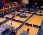 Матч звезд Европы и Азии по настольному теннису пройдет в Минске 29-30 октября