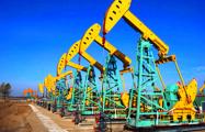 Цена на нефть марки Brent рухнула на 3,38% в течение дня