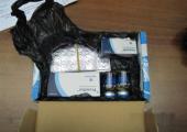 В Хабаровске пресекли незаконные поставки анаболиков из Беларуси