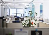 Минские офисы начали дешеветь